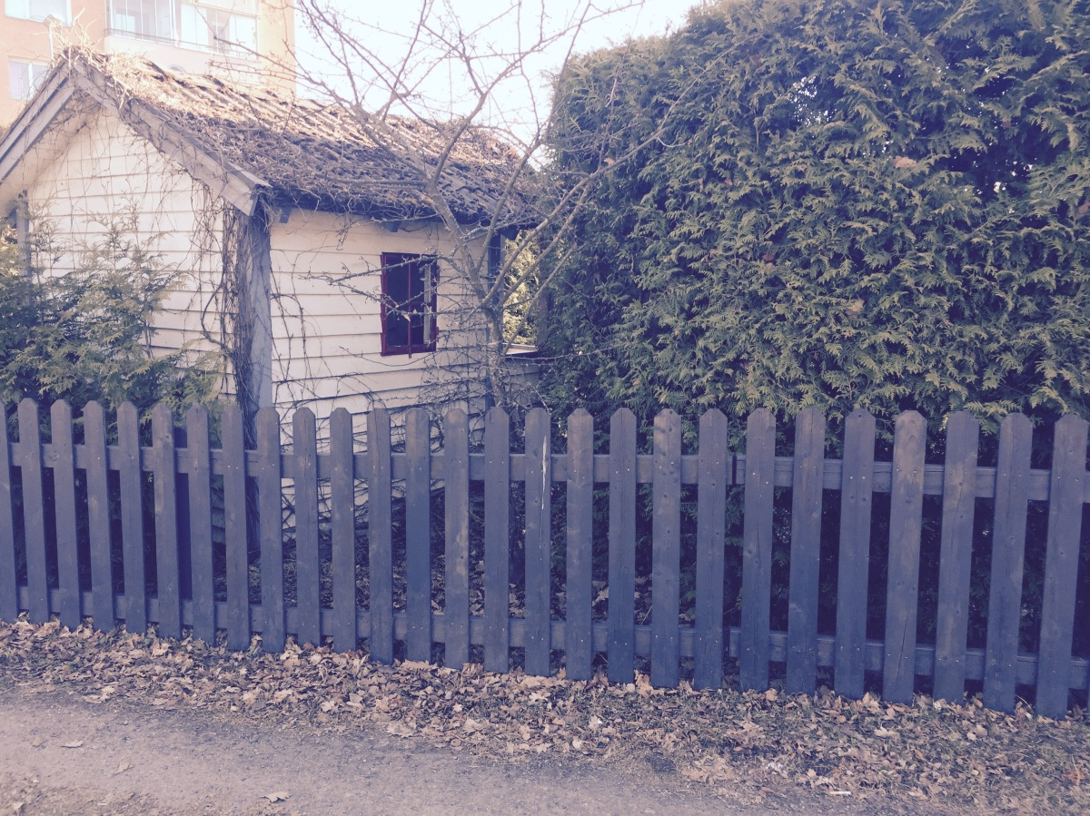 Hur fÃ¥r du ett hÃ¥llbart staket? Läs vÃ¥ra tips – vi vet ...
